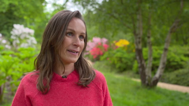 florist philippa craddock talks about the meetings she has had with prince harry and meghan markle ahead of their wedding windsor great park 16th may... - prince harry stock videos and b-roll footage