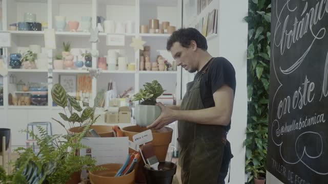 小さな植物やギフトショップで植物をポッティング花屋 - ギフトショップ点の映像素材/bロール