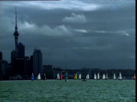 flotilla of boats race through auckland harbour, north island, new zealand - north island new zealand stock videos & royalty-free footage
