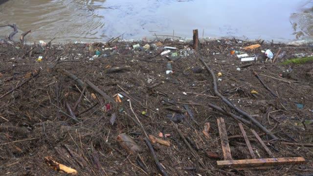 flotsam at flood at dam, saar river, mettlach, saarland, germany - zweig stock-videos und b-roll-filmmaterial