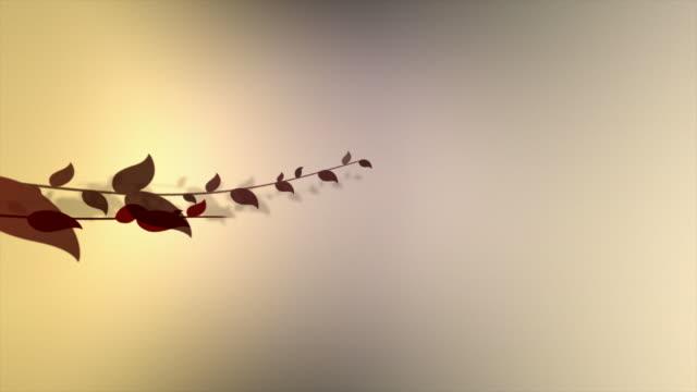 vídeos de stock, filmes e b-roll de florescer quadro - estampa de folha