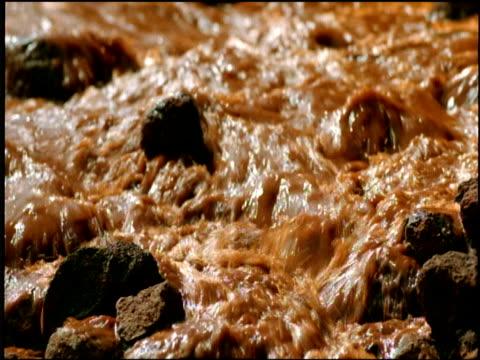vidéos et rushes de flow of red and muddy water cascades over rocky surface - évolution de l'espèce