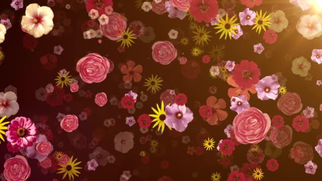 花(ダーク)のループ - 花束点の映像素材/bロール