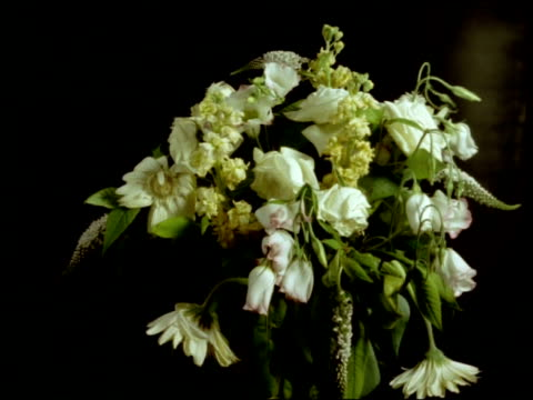 t/l flower bouquet dies, white flowers wilt - bunch stock videos and b-roll footage