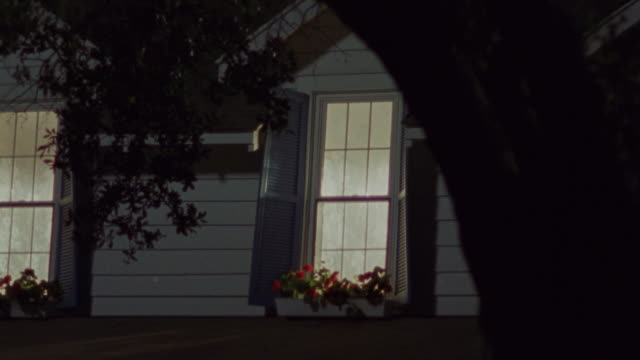 a flower box decorates the front of a dormer window. - dormer stock videos and b-roll footage