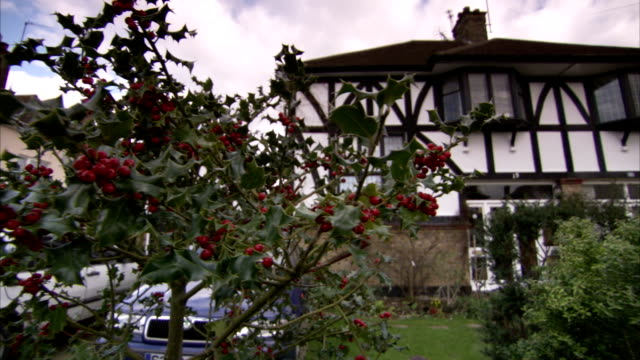Flower bushes in the front garden of a half-timbered semi-detached house in the Rayners Lane district of London. Available in HD.