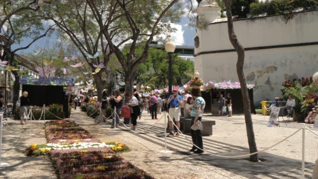 vídeos de stock e filmes b-roll de flower festival and al fresco restaurants on avenue arriaga, funchal, madeira, portugal, atlantic, europe - exposição