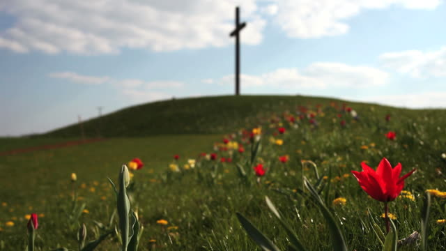 Flower Field In Front Of Cross On A Hill
