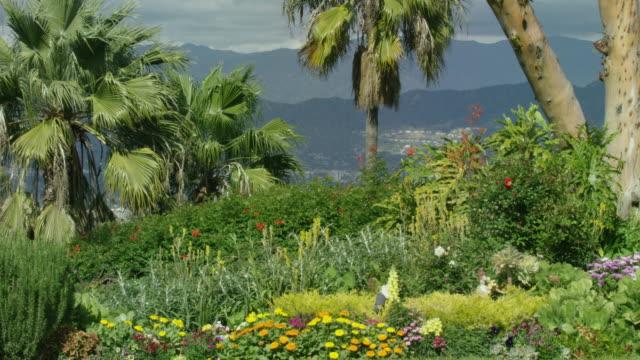 flower garden - formal garden stock videos & royalty-free footage