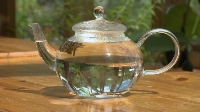 flower herb in teapot of water - beccuccio video stock e b–roll