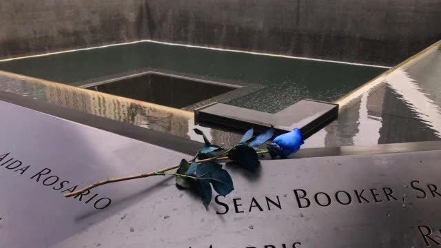 vidéos et rushes de a flower is left following a commemoration ceremony for the victims of the september 11 terrorist attacks at the national september 11 memorial... - mémorial