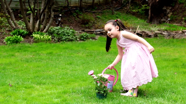flower little girl - watering can stock videos and b-roll footage