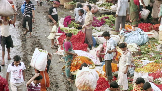 stockvideo's en b-roll-footage met ms flower market in kolkata / kolkata, west bengal, india - handen op de heupen