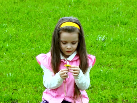 flower of love - hair accessory stock videos & royalty-free footage