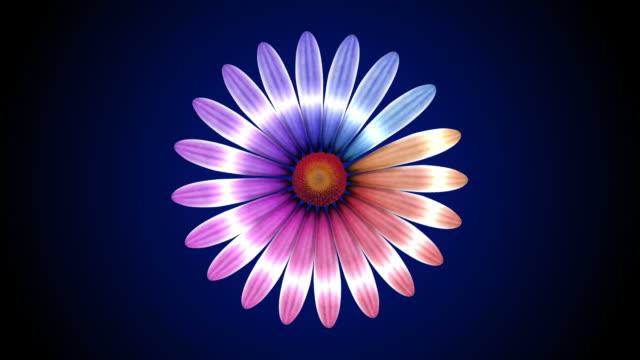 vidéos et rushes de fleur ouverture - printemps