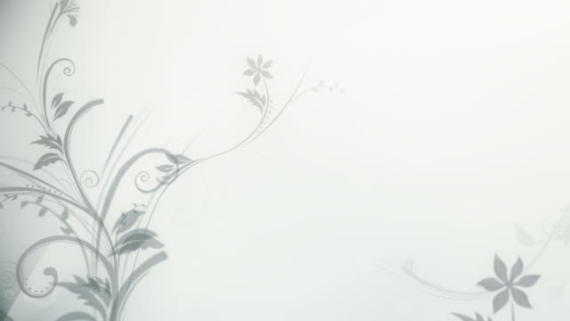 flower pattern background (silver/white) - loop - 花 個影片檔及 b 捲影像