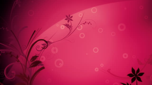 flower pattern background (dark pink) - loop - femininity stock videos & royalty-free footage