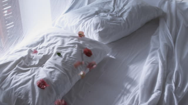 SLO MO MS Flower petals falling on bed, Arnos Vale, Tobago, Trinidad And Tobago