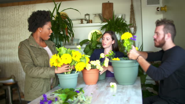flower shop workers. - flower shop stock videos and b-roll footage
