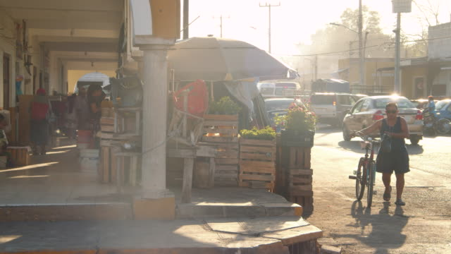 flower street market stall at valladolid mexico. early morning - heat stock videos & royalty-free footage