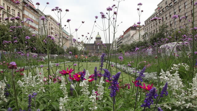 ms flowerbed in old town / prague, czech republic - czech culture stock videos and b-roll footage