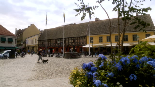 Flowers in Malmö City Square Sweden