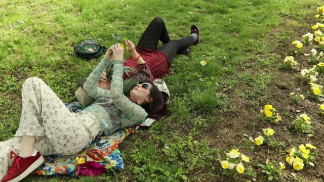 vídeos de stock, filmes e b-roll de flores na primavera - cabelo verde