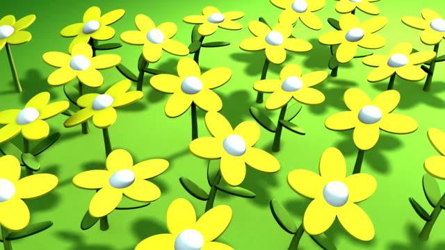 vídeos y material grabado en eventos de stock de flores en el sol - ranúnculo
