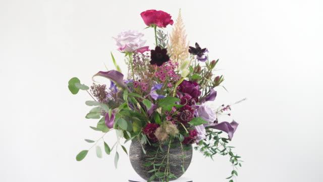 花瓶と花の絶縁ます。 - オランダカイウユリ点の映像素材/bロール