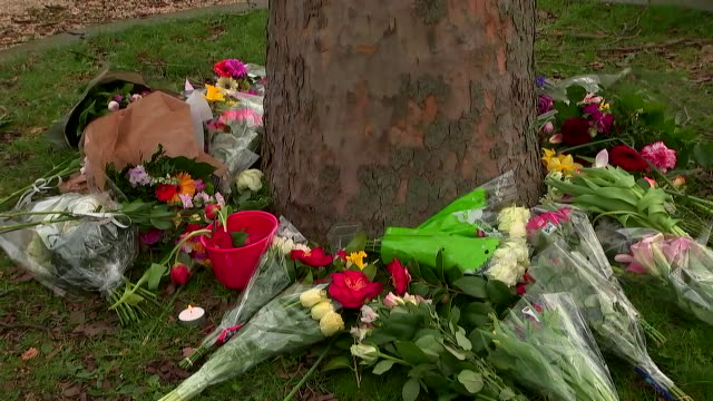 stockvideo's en b-roll-footage met flowers left at a makeshift memorial for the victims of the utretch tram shooting in the netherlands on march 18 2019 - (war or terrorism or election or government or illness or news event or speech or politics or politician or conflict or military or extreme weather or business or economy) and not usa
