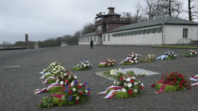 flowers lie on a memorial plaque at the buchenwald concentration camp memorial to commemorate victims of the holocaust on january 26 2018 near weimar... - campo di concentramento di buchenwald video stock e b–roll