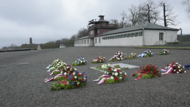 flowers lie on a memorial plaque at the buchenwald concentration camp memorial to commemorate victims of the holocaust on january 26, 2018 near... - weimar video stock e b–roll