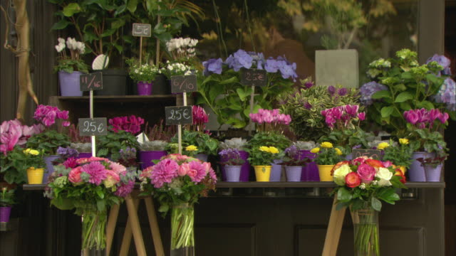cu flowers on display in front of flower shop / paris, france - flower shop stock videos and b-roll footage
