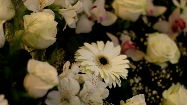 flowers party decoration - funeral stock videos & royalty-free footage