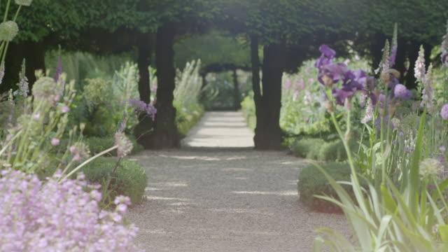 vídeos y material grabado en eventos de stock de ms r/f flowers swaying and trees in domestic garden of kelmarsh hall / northamptonshire, england, united kingdom - northamptonshire