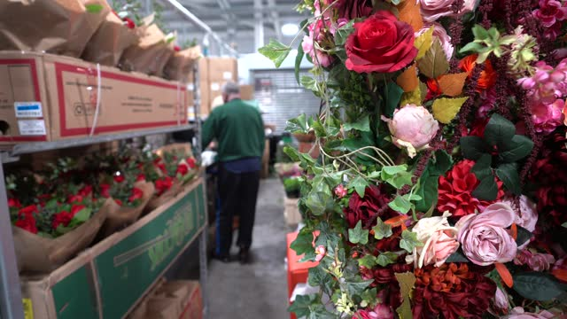 flowers trades-people work at covent garden market early in the morning on february 11, 2021 in london, england. new covent garden market is the... - retail occupation stock videos & royalty-free footage