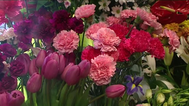flowers - bunch stock videos & royalty-free footage