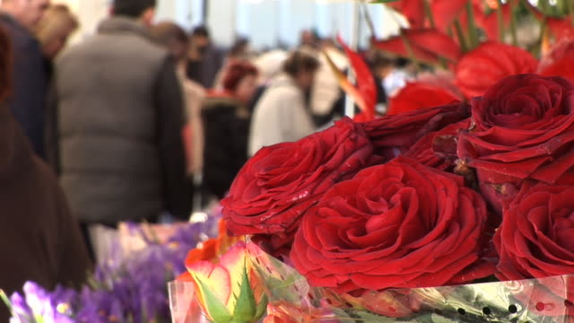 HD: Flowers