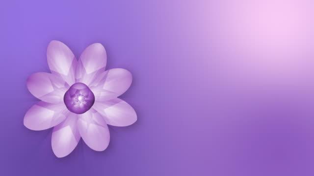 の花 - 花頭点の映像素材/bロール