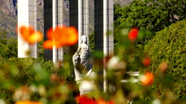 ws flowers with huguenot monument in background / franschhoek/ western cape/ south africa - franschhoek stock videos and b-roll footage