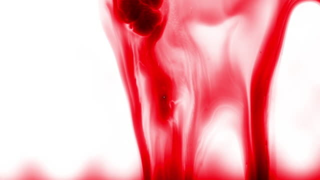 flowing blood on the white background, abstract, 4k stock video - gouache stock videos & royalty-free footage