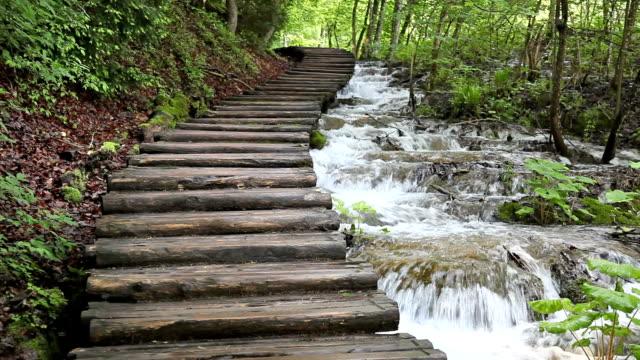 flowing creek beside wooden walkway plitvice lakes national park croatia - national park stock videos & royalty-free footage