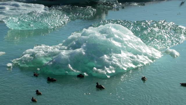 vídeos de stock e filmes b-roll de fluir icebergs em lagoa jokulsarlon - gema semipreciosa