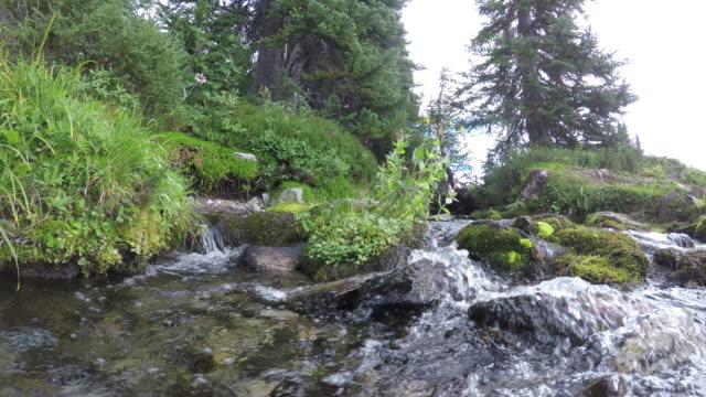 flowing mountain water stream - garibaldi park stock videos & royalty-free footage