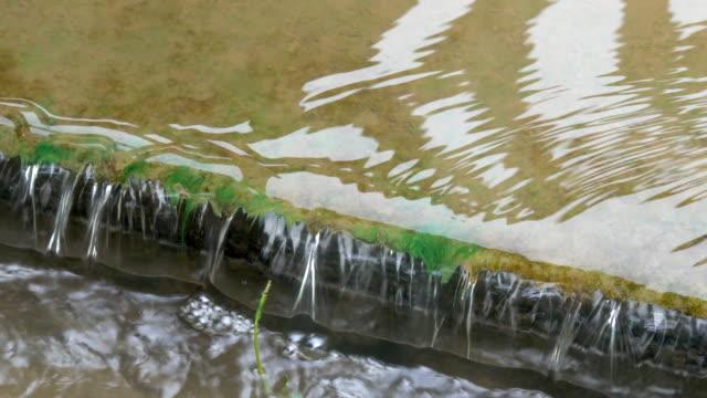 vídeos de stock, filmes e b-roll de 4 k fluxo de água no parque - lago reflection