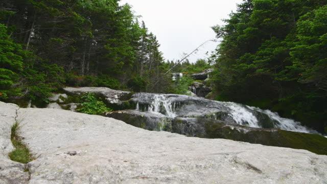 stockvideo's en b-roll-footage met een stromende rivier in een bos - steen rots