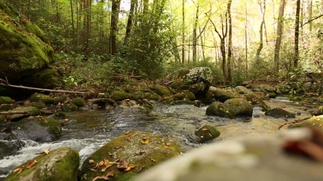 Stromende rivier in Gatlinburg (Tennessee)
