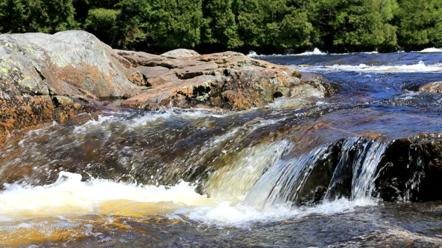 flowing river in summer, quebec, canada - cascade range stock videos & royalty-free footage