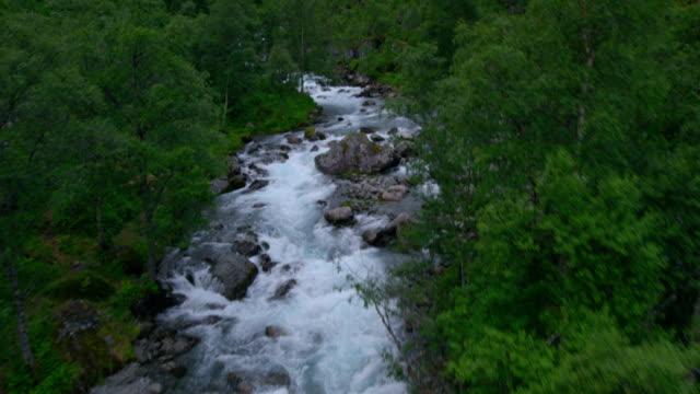 vidéos et rushes de coulant au milieu de la forêt. vue aérienne - torrent