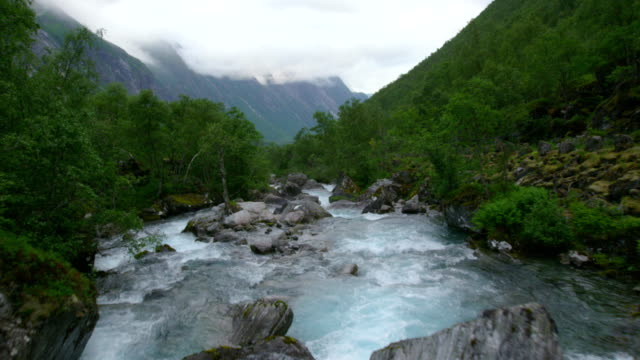 flowing stream in the middle of forest - condition stock videos & royalty-free footage